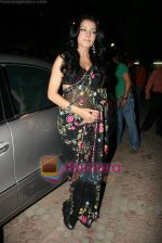 Celina Jaitley at Country Club New Year_s bash press meet in Country Club, Andheri on 30th Dec 2009 (35).JPG