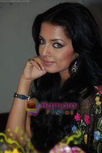 Celina Jaitley at Country Club New Year_s bash press meet in Country Club, Andheri on 30th Dec 2009 (6).JPG