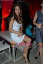 Kim Sharma at Rishi Darda_s annual bash in Tote, Worli on 29th Dec 2009 (2).JPG