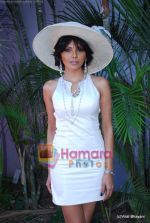 Sherlyn Chopra at Salman Khan_s Veer race at Heelo Million race in Mahalaxmi Race Course on 17th Jan 2010 (2).JPG