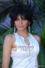 Sherlyn Chopra at Salman Khan_s Veer race at Heelo Million race in Mahalaxmi Race Course on 17th Jan 2010 (3).JPG