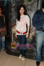 Sada at the launch of Satish Reeddy_s at House of Horror in Metro Junction, Kalyan on 16th Feb 2010 (32).JPG