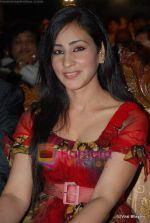 at Gujarati Screen and Stage Awards in Tulip Star on 20th Fen 2010 (49).JPG