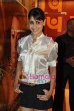 Genelia D Souza at Shahid Kapoor_s surprise birthday bash in Escobar on 24th Feb 2010 (3).JPG