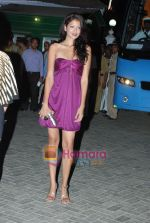 at IPL red carpet in Tote on 11th March 2010 (21).JPG