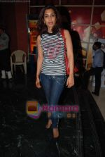 Masumeh Makhija at Countdown To Zero premiere hosted by Niret and Nikhil Alva in Fun Cinemas on 17th March 2010 (2).JPG