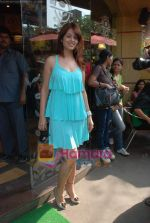 Anjana Sukhani at Tum Milo toh Sahi media meet in Bandra on 29th March 2010 (81).JPG