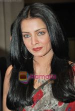 Celina Jaitley at Egyptian Diplomat_s bollywood Exhibition in Nehru Centre, Mumbai on 30th March 2010 (10).JPG