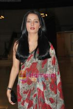 Celina Jaitley at Egyptian Diplomat_s bollywood Exhibition in Nehru Centre, Mumbai on 30th March 2010 (3).JPG