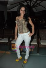 at Siddharth Kannan_s Surprise Birthday Bash in Vie Lounge on 30th March 2010 (18).JPG