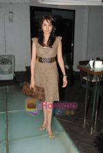 at Siddharth Kannan_s Surprise Birthday Bash in Vie Lounge on 30th March 2010 (2).JPG