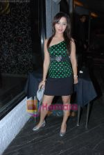 at Siddharth Kannan_s Surprise Birthday Bash in Vie Lounge on 30th March 2010 (21).JPG