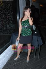 at Siddharth Kannan_s Surprise Birthday Bash in Vie Lounge on 30th March 2010 (24).JPG