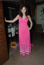 at Siddharth Kannan_s Surprise Birthday Bash in Vie Lounge on 30th March 2010 (32).JPG