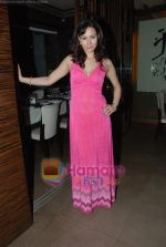 at Siddharth Kannan_s Surprise Birthday Bash in Vie Lounge on 30th March 2010 (33).JPG