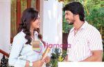 Still from movie Muskurake Dekh Zara (21).jpg