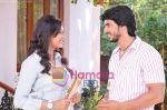 Still from movie Muskurake Dekh Zara (4).jpg