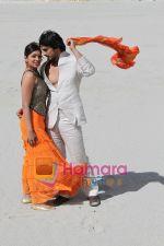 Still from movie Muskurake Dekh Zara (43).jpg