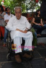Shashi Kapoor at Prithvi Summertime launch in Prithvi on 10th April 2010 (3).JPG