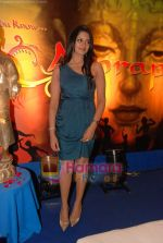 at Amrapali film launch in Hotel Sea Princess on 16th April 2010 (10).JPG