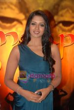 at Amrapali film launch in Hotel Sea Princess on 16th April 2010 (2).JPG