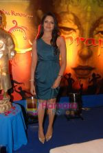 at Amrapali film launch in Hotel Sea Princess on 16th April 2010 (8).JPG