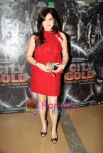 Reva Babbar at City of Gold premiere in PVR Goregaon on 23rd April 2010 (28).JPG