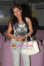 at Lakhmendra Khurana_s bash in Rennaisance Hotel on 17th May 2010 (26).JPG