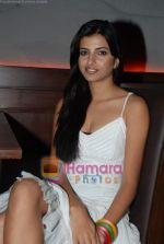 esha goswami at Kimaya Entertainment short film screening at Kiamaya 108, Andheri on 23rd May 2010 (7).JPG