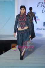 at NIFT Annual fashion show in Lalit Hotel on 24th May 2010 (68).JPG