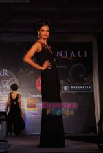 Marwar wedding show with Gitanjali show in WTC on 24th July 2010 (23).JPG