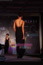 Marwar wedding show with Gitanjali show in WTC on 24th July 2010 (26).JPG