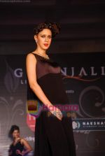 Marwar wedding show with Gitanjali show in WTC on 24th July 2010 (5).JPG