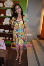at Roohi Jaikishan hosts preview of Villeroy & Boch tableware in Churchgate on 30th July 2010 (43).JPG