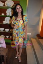 at Roohi Jaikishan hosts preview of Villeroy & Boch tableware in Churchgate on 30th July 2010 (44).JPG