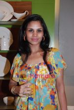 at Roohi Jaikishan hosts preview of Villeroy & Boch tableware in Churchgate on 30th July 2010 (45).JPG