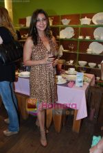 at Roohi Jaikishan hosts preview of Villeroy & Boch tableware in Churchgate on 30th July 2010 (49).JPG