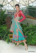 Shonal Rawat at Amby Valley Bridal week with top designers in Sahara Star on 14th Sept 2010 (17).JPG