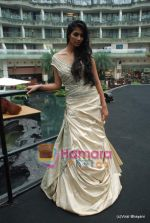 at Amby Valley Bridal week with top designers in Sahara Star on 14th Sept 2010 (101).JPG