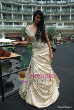 at Amby Valley Bridal week with top designers in Sahara Star on 14th Sept 2010 (102).JPG