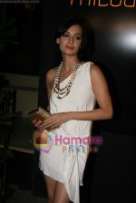 Dia Mirza at Shabana Azmi_s 60th birthday bash in Juhu, Mumbai on 18th Sept 2010 (187).JPG