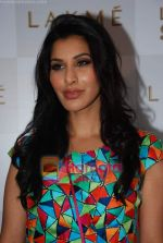 Sophie Chaudhary at Lakme Winter fashion week 2010 day 3 on 19th Sept 2010 (15).JPG