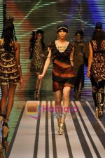 Model walks the ramp for Malini Ramani Show at Lakme Winter fashion week day 5 on 21st Sept 2010 (46).JPG
