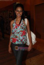 at Lakme Winter fashion week 2010 day 5 on 21st Sept 2010 (269).JPG