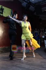Kitu Gidwani at Sandip Soparrkar_s International Dance day in Enigma on 8th Oct 2010 (16).JPG