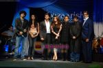 Aditya Roy Kapoor, Monikangana Dutta, Hrithik Roshan, Aishwarya Rai, Ronnie Screwvala, Sanjay Leela Bhansali, Amitabh Bachchan at Guzaarish music launch in Yashraj Studios on 20th Oct 2010 (3).JPG