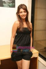 at glam photo shoot for film Deewangi Ne Had Kar Di in Oshiwara on 20th Oct 2010 (44).JPG