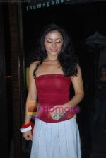 Sonia Singh at Star One_s Dil mil gaye Party in Vie Lounge on 22nd Oct 2010 (2).JPG