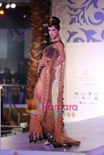 Model walks the ramp for Sonia Mehra at Aamby Valley India Bridal Week day 5 on 2nd Nov 2010 (23).JPG