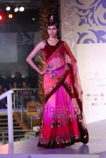 Model walks the ramp for Sonia Mehra at Aamby Valley India Bridal Week day 5 on 2nd Nov 2010 (24).JPG